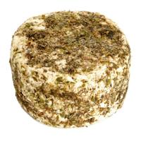 queso_3-00162-02