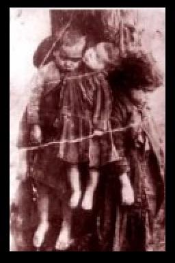 Детки казненные на дереве