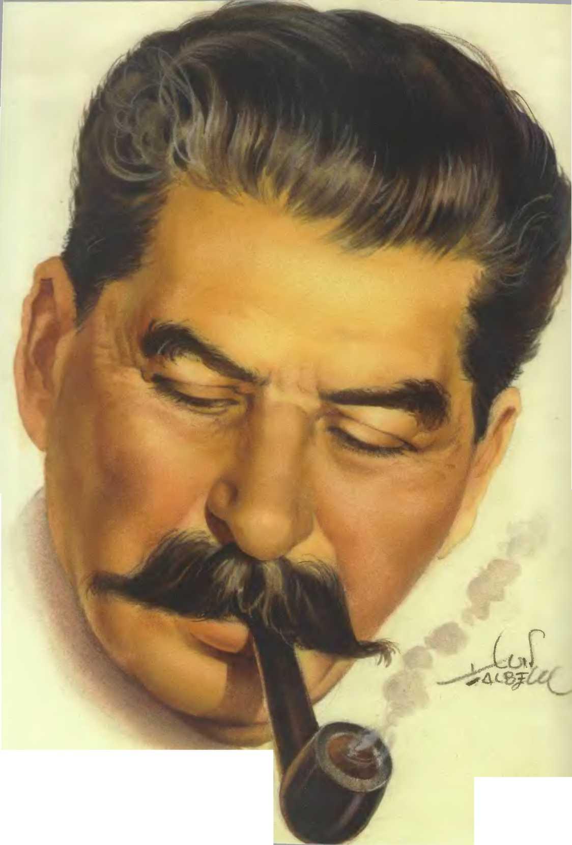 Сталин крупным планом - копия
