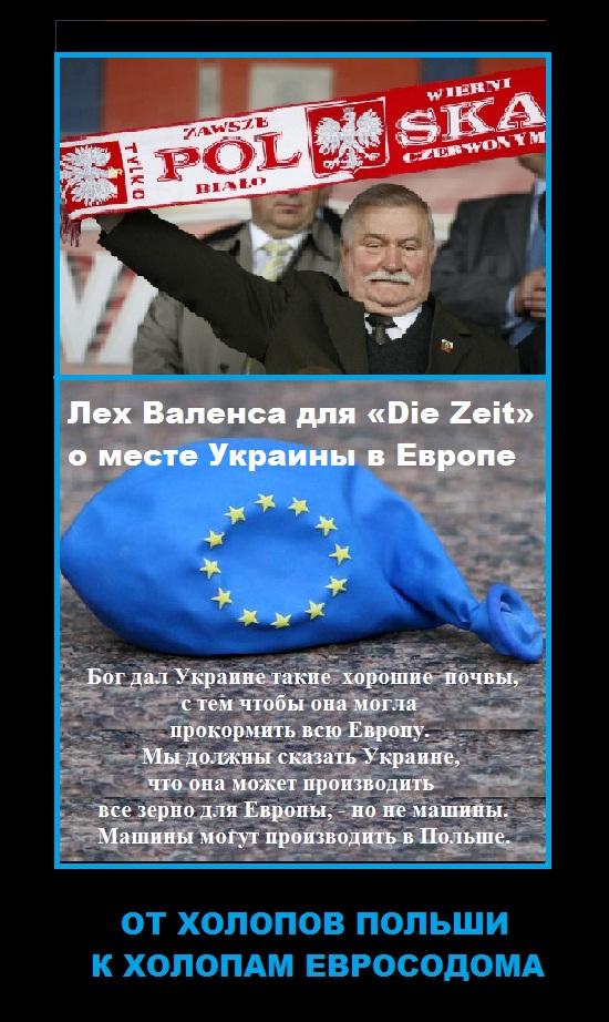 От холопов польши к холопам евросодома