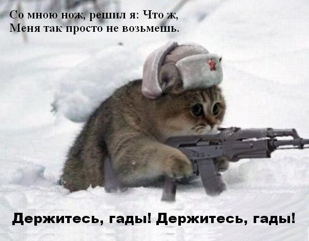 котик с автоматом 2