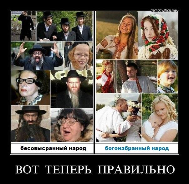 евреи - русские