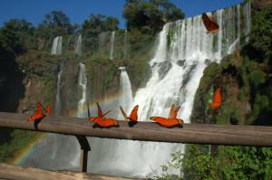 Водопады Игуасу, Аргентина