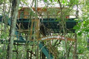 отель на деревьях Ariau Amazon Towers Hotel