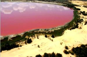 Розовое озеро Хильер