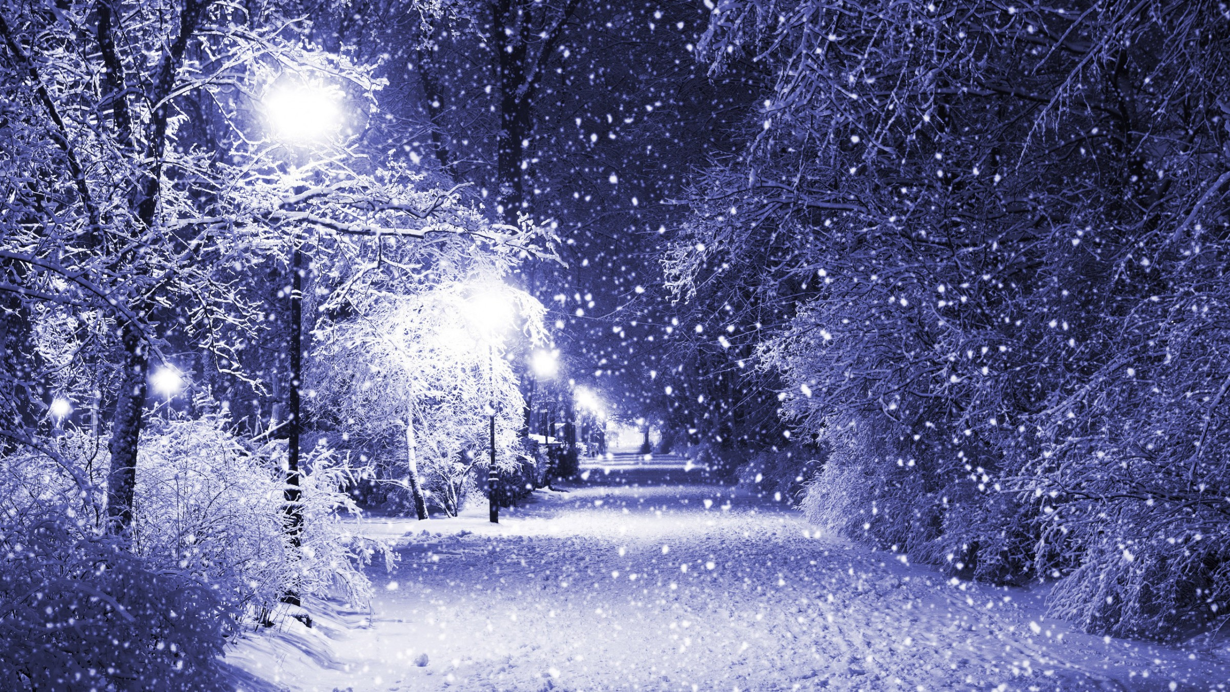 snow-winter-street-lantern-night-tree-nature-1350x2400