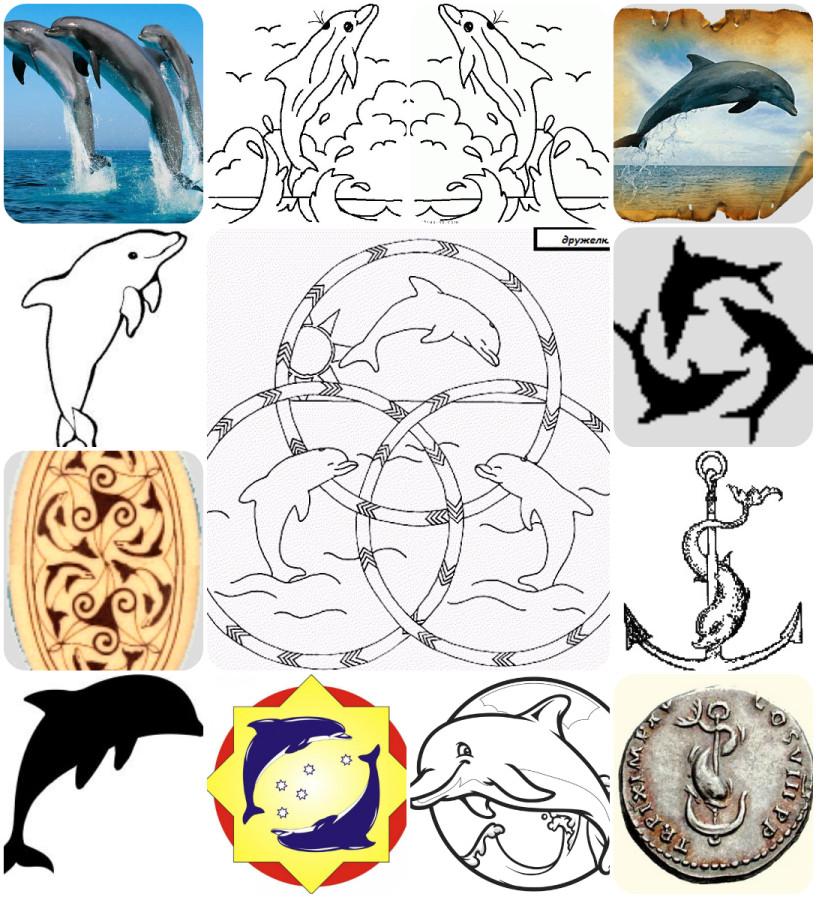 collage дельфин