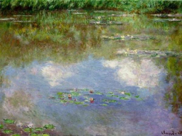 3- водяные лилии