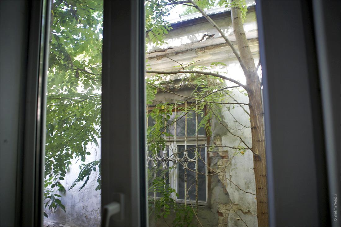 Дом Чеховых 36