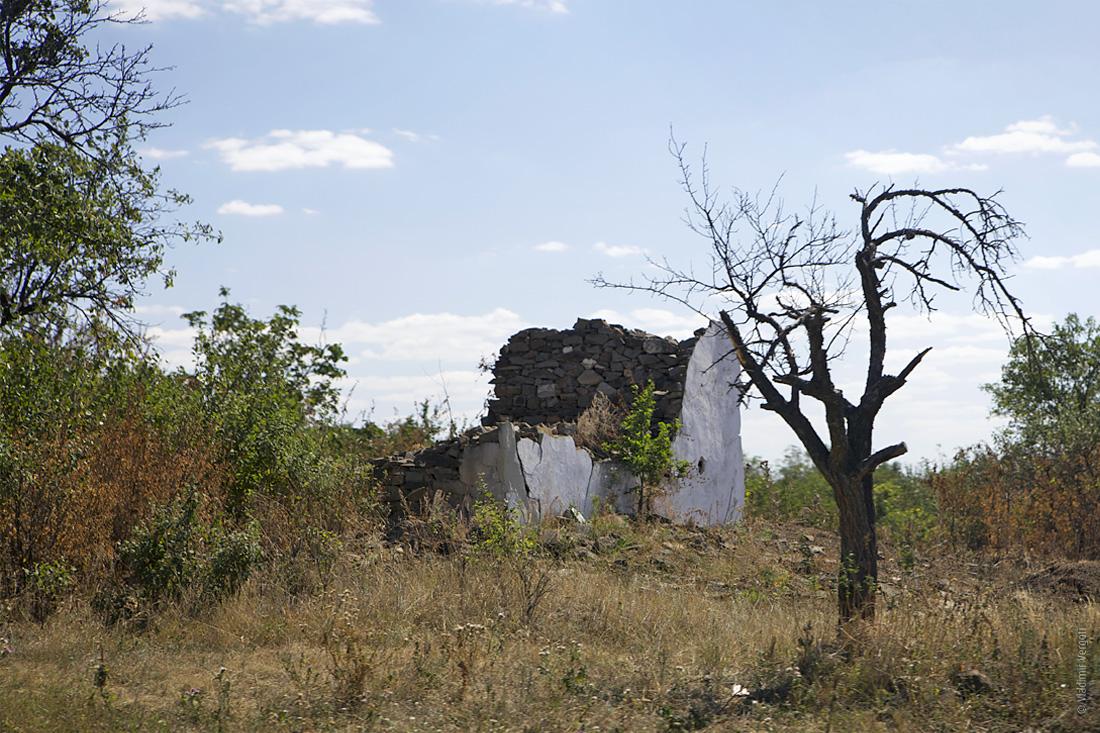 Саур-могила 14