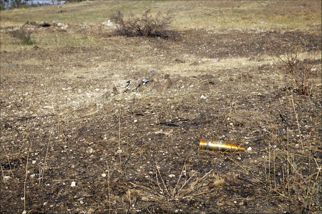 Саур-могила 169