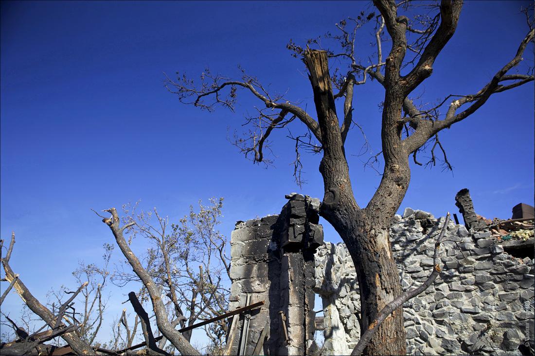 Саур-могила 175