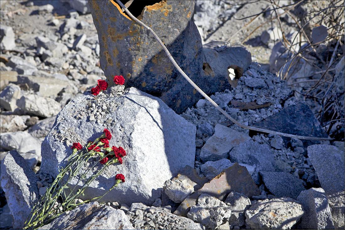 Саур-могила 207