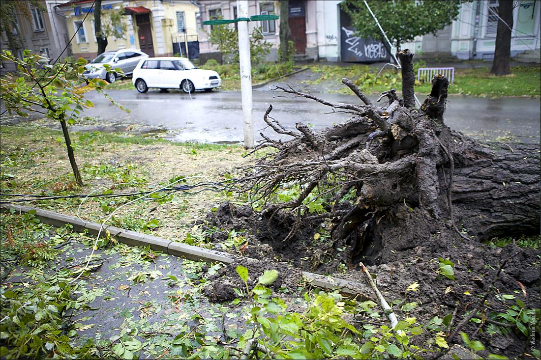 Ураганный Таганрог55