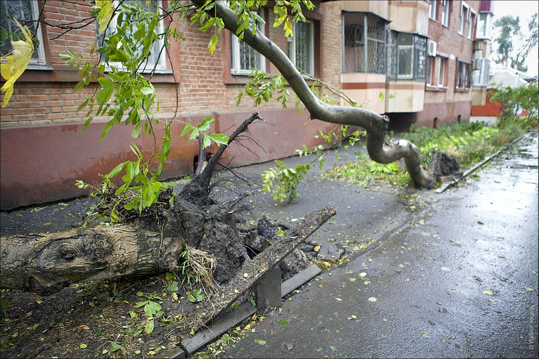Ураганный Таганрог66
