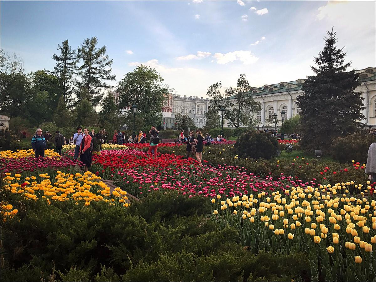 Москва 47.jpg