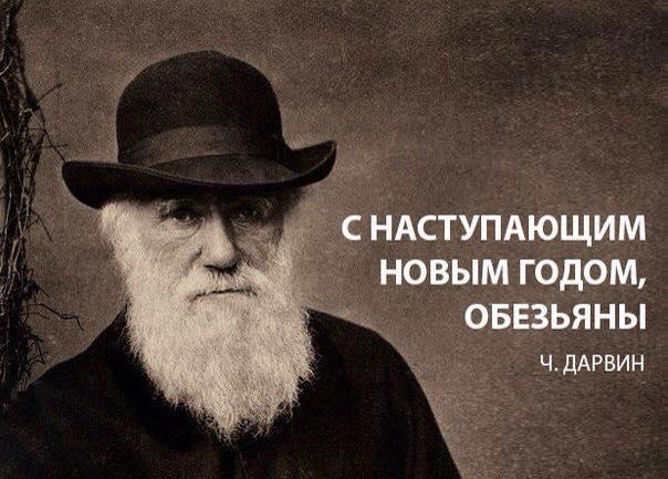 qFCVsWKOZ94