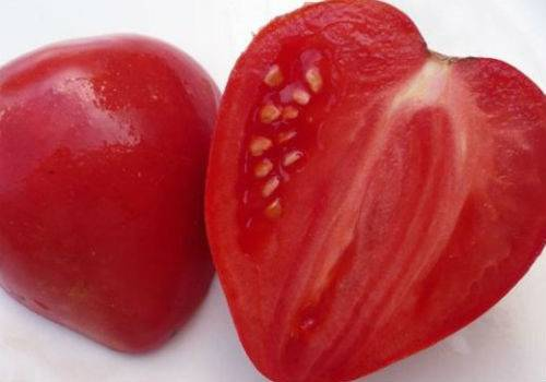 https://fermilon.ru/sad-i-ogorod/ovoshhi/tomat-mazarini-harakteristika-i-opisanie-sorta.html