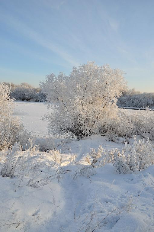 зима12-ин3