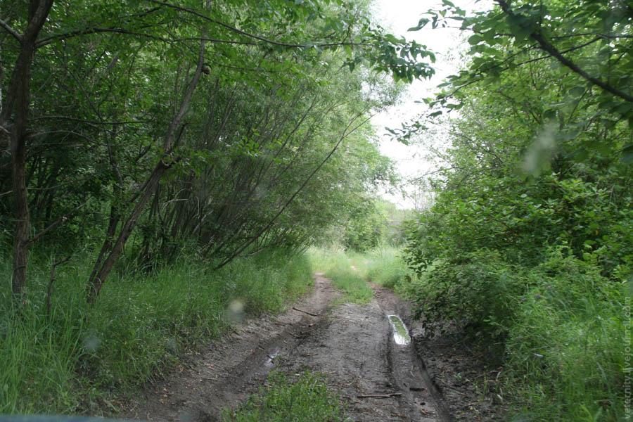 Дорога вдоль Онона