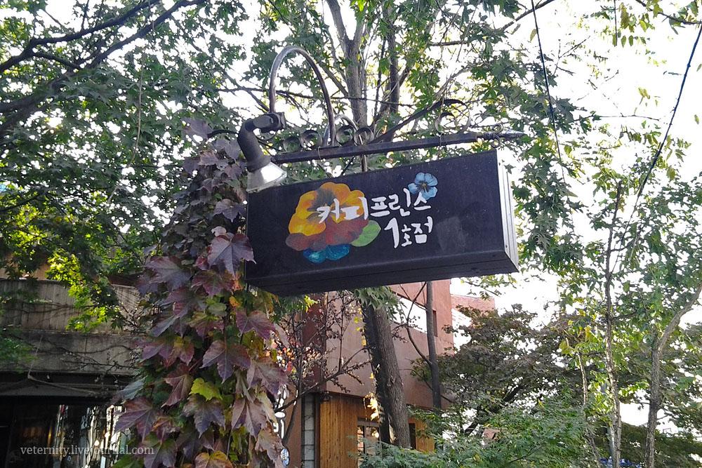 Настоящее кафе в Сеуле, где снимали Первое кафе «Принц» 커피프린스 1호점