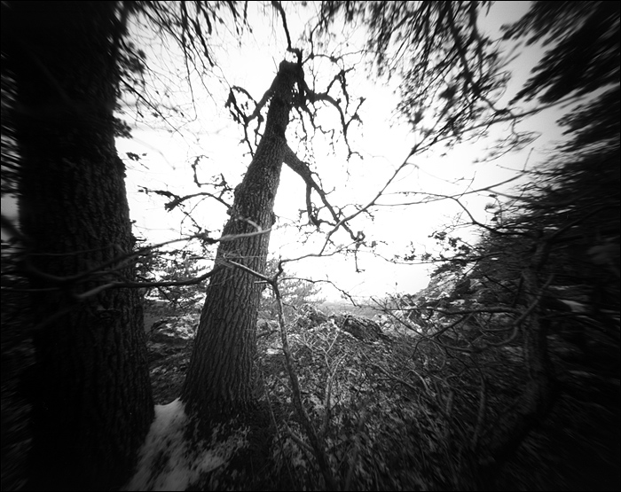 crimea_feb_2015_pinhole_19