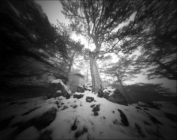 crimea_feb_2015_pinhole_21