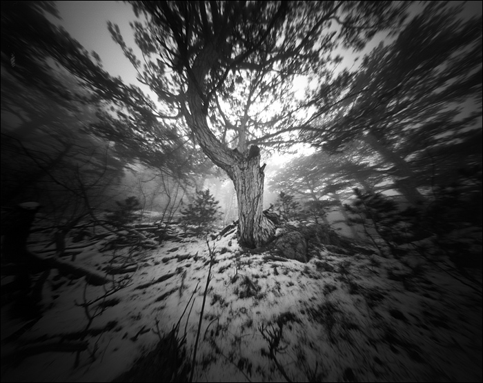 crimea_feb_2015_pinhole_23