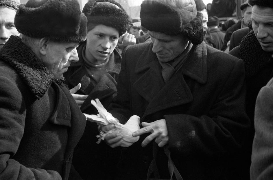 moskva-1958-19