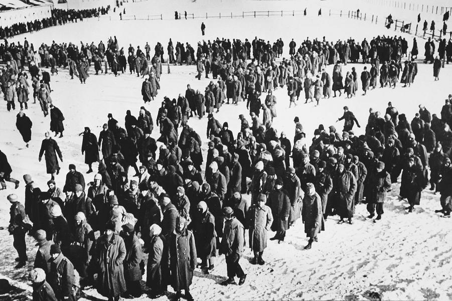 Немецкие пленные.png