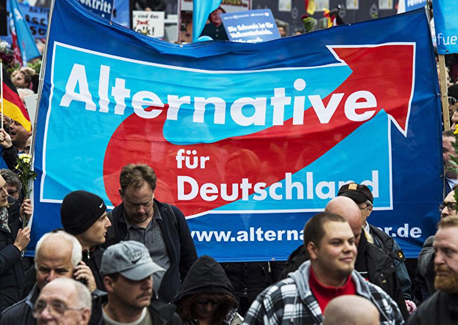 Альтернатива для Германии.png