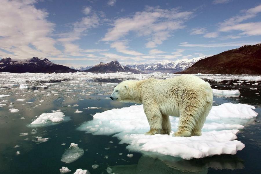 Глобальное потепление.png