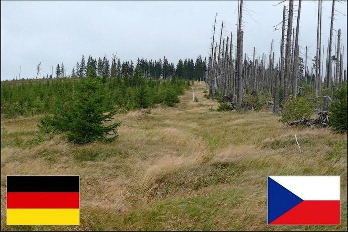 Германия Чехия
