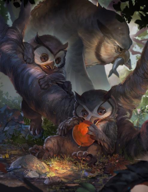 owlbearcub