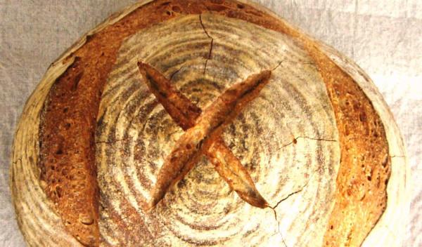 IMGP3146.1 Beer barley bread