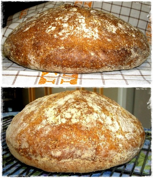 First Bread Ever