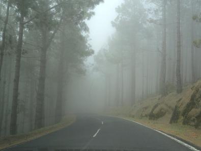 Туман002