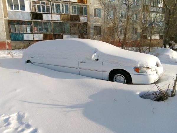 Лимузин-подснежник
