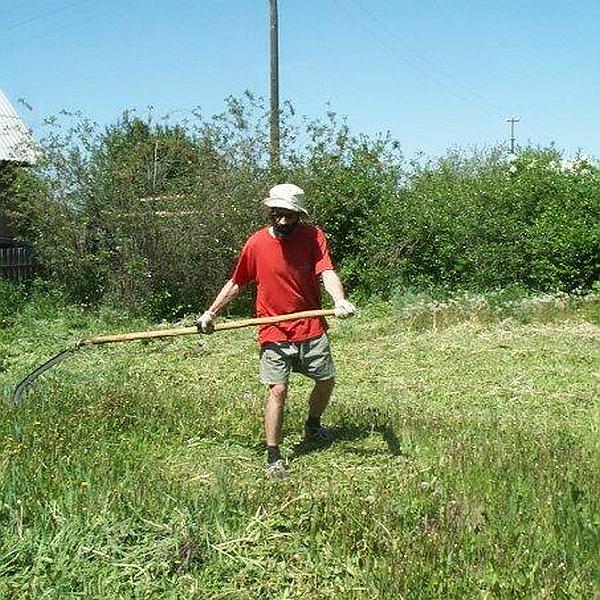 Виктор Корб косит траву на дачном участке в Осташкове. Фото © Татьяна Ильина, 2013