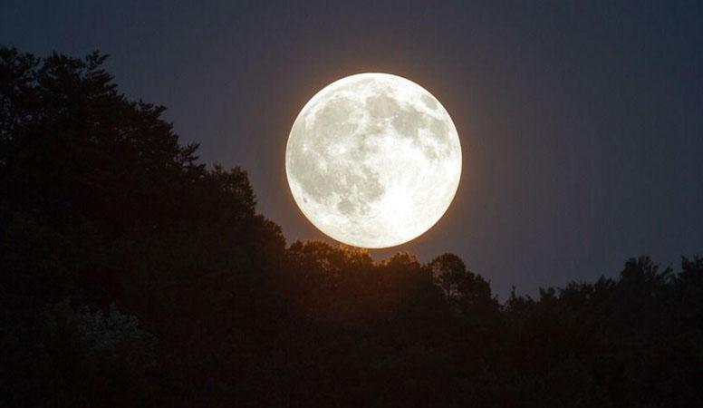 Россия отказалась от участия в лунном проекте США
