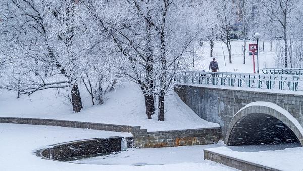 России пообещали вишневую зиму