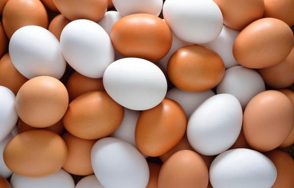 Росконтроль проверил качество яиц