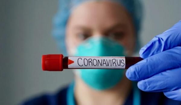 Появилась новая версия возникновения коронавируса