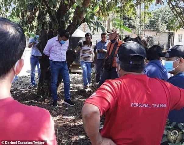 Жители мексиканского города привязали мэра к дереву за то, что не выполнил предвыборные обещания