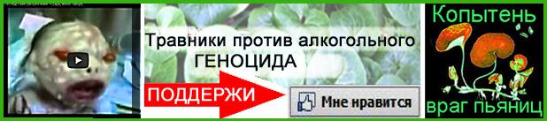 Копытень-Травники_2