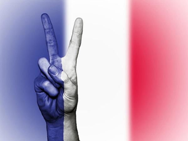 Несколько слов о протестах во Франции