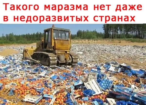 Санкционные продукты продолжат уничтожать. Их нельзя раздавать нуждающимся бесплатно