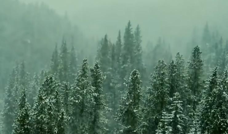 Шокирующие находки Сибири которые наука не может объяснить