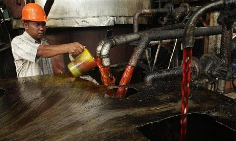 Экономический рывок: в Россию ввезен миллион тонн пальмового масла