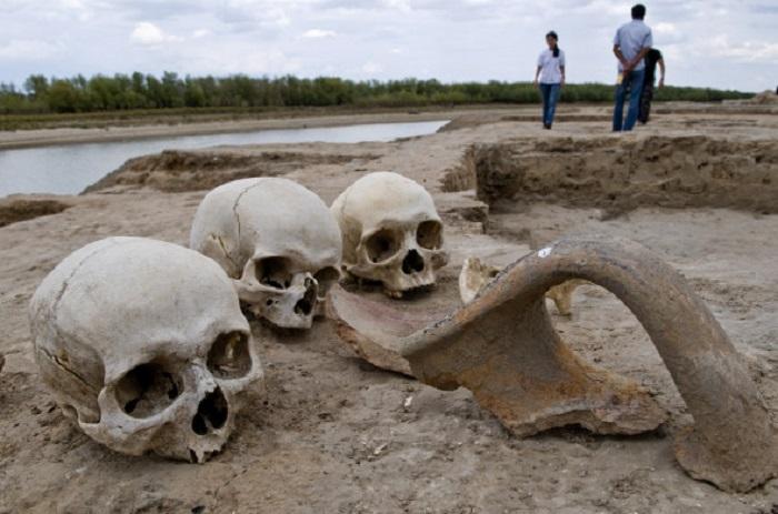 Ученые предлагают отпраздновать вымирание человечества
